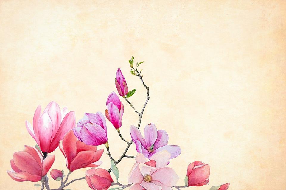 Significado del nombre flor